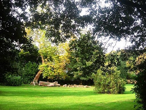 Autumn Sunlight in Pontypool Park - geograph.org.uk - 1842879