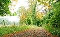 Autumn at Rabbit Hill near Ballymena (3) - geograph.org.uk - 961284.jpg