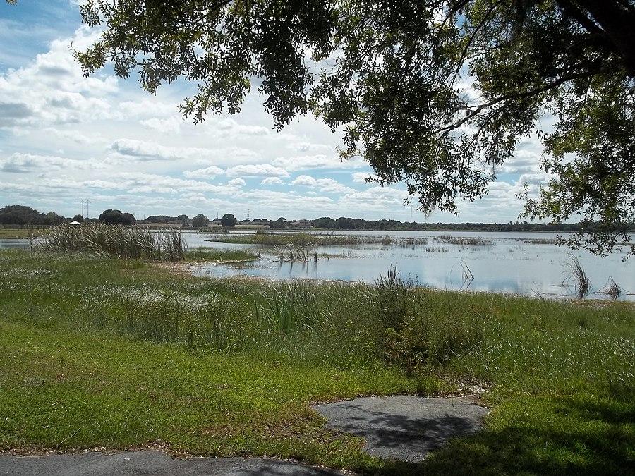 Lake Damon