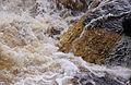 Aysgarth Falls MMB 63.jpg