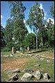 Bällsta (Arkels tingstad) - KMB - 16000300012777.jpg
