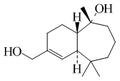 Bacciferina A.png