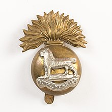 Badge, regimental (AM 790965-1).jpg