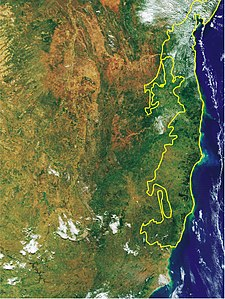 Bahia coastal forests WWF Satelite.jpg