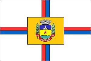Apucarana - Image: Bandeira apucarana