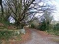 Barna Woods - geograph.org.uk - 1249263.jpg