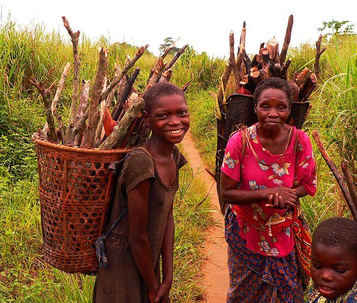 Basankusu collecting firewood (c) Francis Hannaway