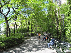 Battery Park City - Greenery at South Cove