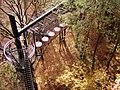Baumwipfelpfad - panoramio (1).jpg