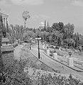 Beeldhouwwerken in de perzische tuin van de Bahai Temple (Bahá'í Huis van Aanbid, Bestanddeelnr 255-2103.jpg