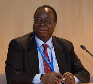 Bank of Tanzania - The going Governor of BOT Benno Ndulu