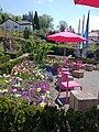 Besucherstühle in den Menzingergärten.jpg