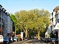Beurhausstraße, Dortmund, 16.4.14 - panoramio.jpg