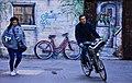 Bicycles (229237477).jpeg