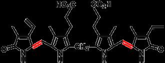 Bilin (biochemistry) - Bilirubin, a yellow bilin, is a breakdown product of heme