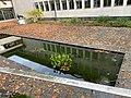 Biotop-Brunnen.jpg