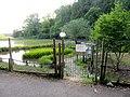 Biotope beside headstream of Otani river.jpg