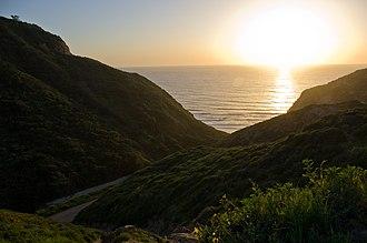 Scripps Coastal Reserve - The path to Black's Beach through Scripps Coastal Reserve