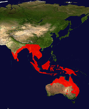 Description de l'image Black-Necked Stork Range Map.jpg.