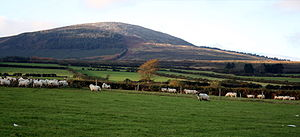 Black Rock Mountain, County Wexford - Black Rock Mountain from the SE