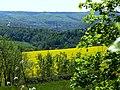 Blick von der B229 auf Arnsberg - panoramio.jpg