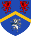 Blue and Gold Coat of Arms.png