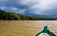 Boating down the Kinabatangan River (14134141746).jpg