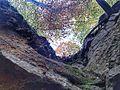 Bois de Clairefontaine - panoramio (2).jpg
