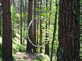 Bosque de Oma (30).JPG