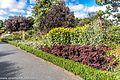Botanic Gardens In Glasnevin (Dublin) (7951835950).jpg