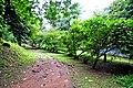 Botanic garden limbe108.jpg