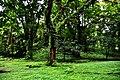 Botanic garden limbe77.jpg