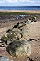 Boulders on Cladach beach - geograph.org.uk - 814371.jpg