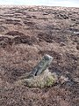 Boundary Stone and Dick Delf Hill - geograph.org.uk - 1751736.jpg
