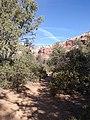 Boynton Canyon Trail, Sedona, Arizona - panoramio (40).jpg