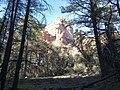 Boynton Canyon Trail, Sedona, Arizona - panoramio (47).jpg