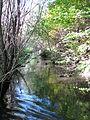 Bozicka reka36.JPG