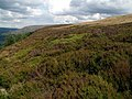 Bramah Edge looking east - geograph.org.uk - 495848.jpg