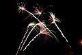 Bray Fireworks (6848287056).jpg