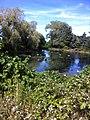 Brewster, MA 02631, USA - panoramio (9).jpg