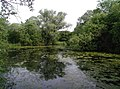Brickyard Farm, Howden - geograph.org.uk - 471865.jpg
