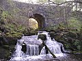 Bridge and Waterfall on Castlerankine Burn - geograph.org.uk - 164722.jpg