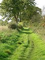 Bridleway near Lowdham - geograph.org.uk - 1013491.jpg
