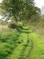Bridleway near Lowdham - geograph.org.uk - 1013491.jpg