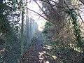 Broadway footpath (2) - geograph.org.uk - 1721870.jpg