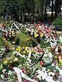 Bronislaw geremek grave.JPG