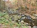 Buchberger Leite im Herbst.jpg