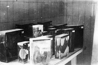 Ilse Koch - Buchenwald 16 April 1945. Collection of prisoners' internal organs. Photo taken by Jules Rouard, military volunteer incorporated to the 1st American Army, 16ème Bataillon de Fusiliers.