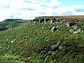 Burbage Rocks - Looking Towards Higger Tor - geograph.org.uk - 356699.jpg
