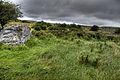 Burren (8058373319) (2).jpg
